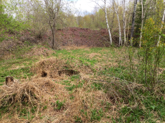 Claim this site & we'll keep the grass cut to maintain the tailings hill visibility.