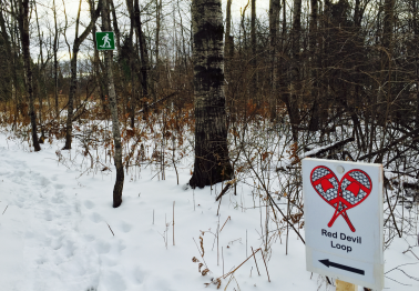 We have some new signs for the snowshoe trails. The trails are also identified with colored marking tape.